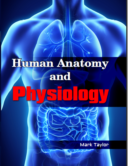 Human Anatomy & Physiology HANP_MT